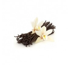 smartflex flower vanilka 0,7 kg